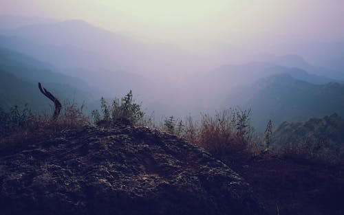 Gratis stockfoto met achtergrond, avontuur, begroeiing, bergen
