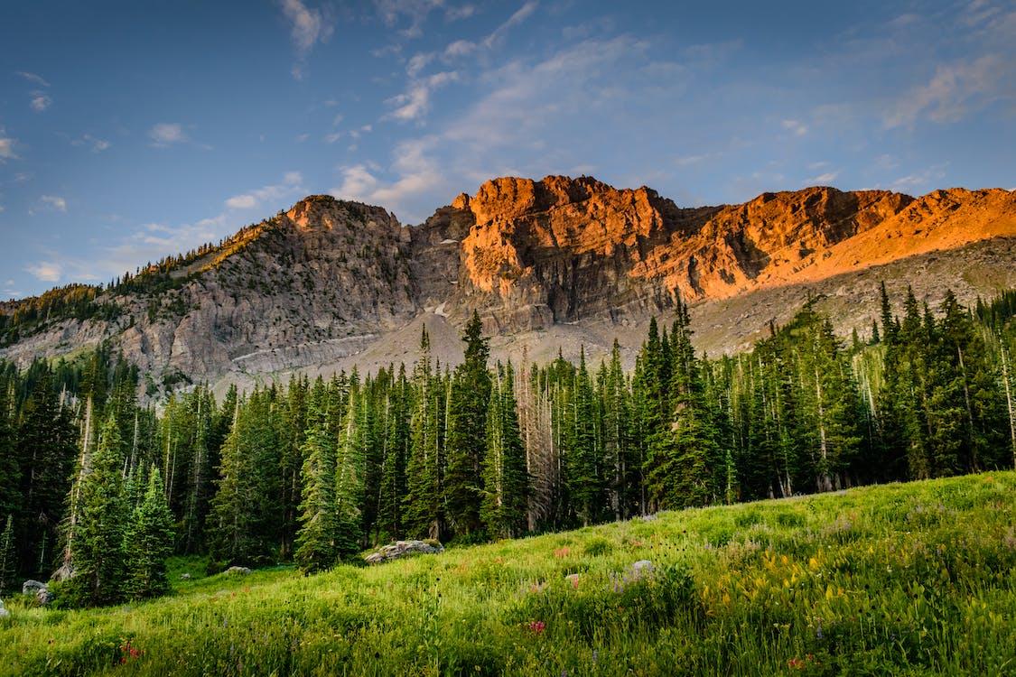 bakgrundsbilder mac, berg, dagsljus