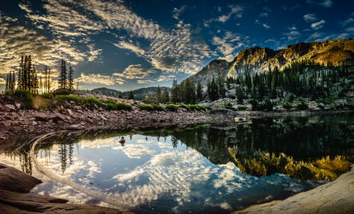 강, 경치, 경치가 좋은, 로키산맥의 무료 스톡 사진