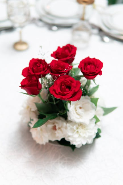 Red and white rose flowers in vase on white surface