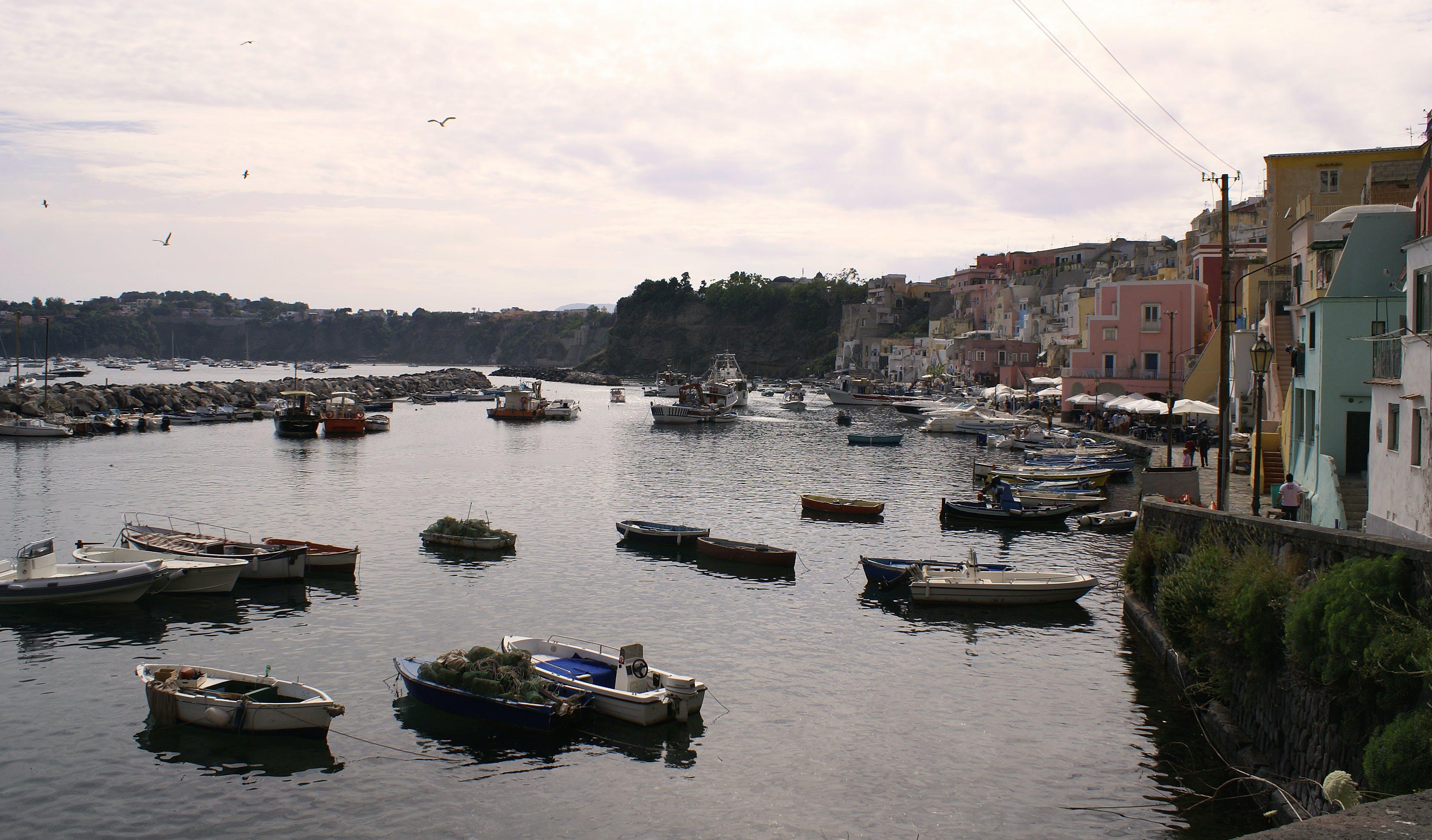 Free stock photo of boats, colors, fishermen, fishing boats