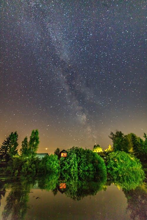 Kostenloses Stock Foto zu abend, bäume, dunkel, himmel