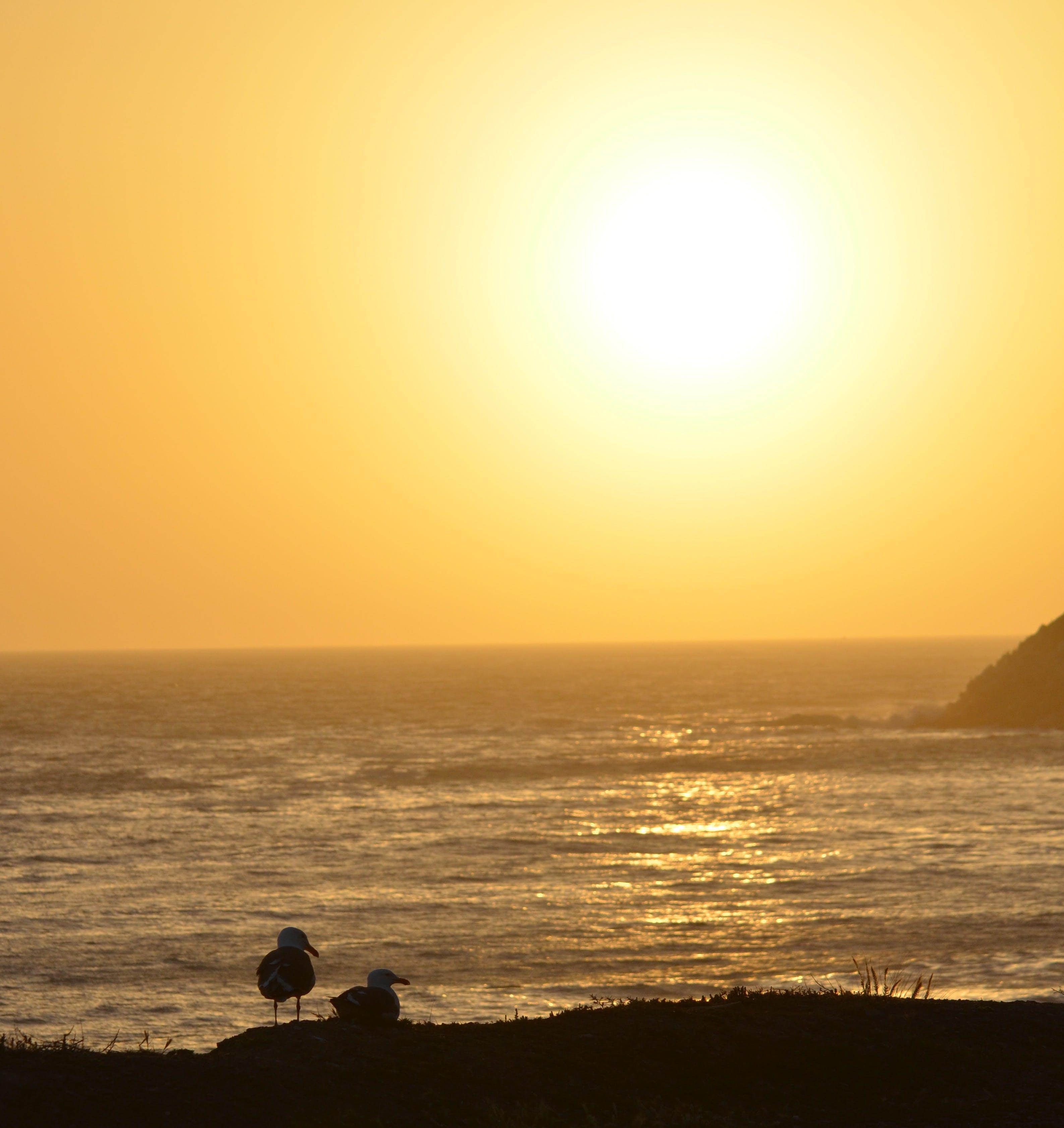 Kostenloses Stock Foto zu einsamen strand, gelb sonnenuntergang, kalifornien sonnenuntergang, kalifornien strände