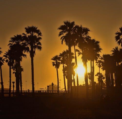 Fotobanka sbezplatnými fotkami na tému breh, farby západu slnka, južná kalifornia, kalifornia západ slnka