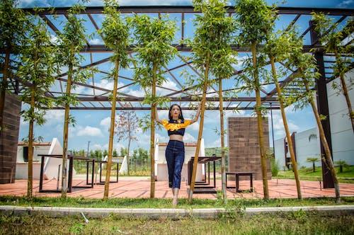 Foto d'estoc gratuïta de bambús, dona, nena, persona