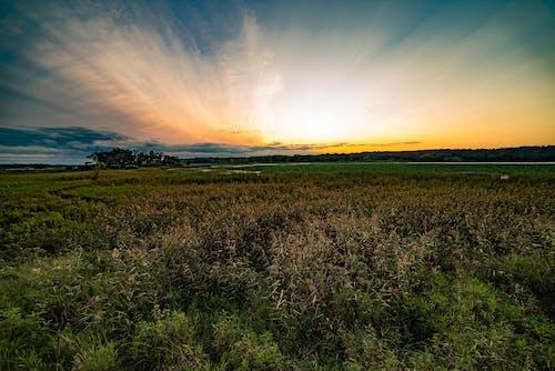 Foto profissional grátis de cênico, céu, daramtic, fazendas