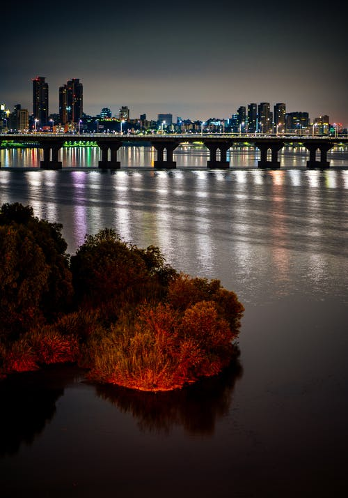 Gratis arkivbilde med bro, by, natt, rød