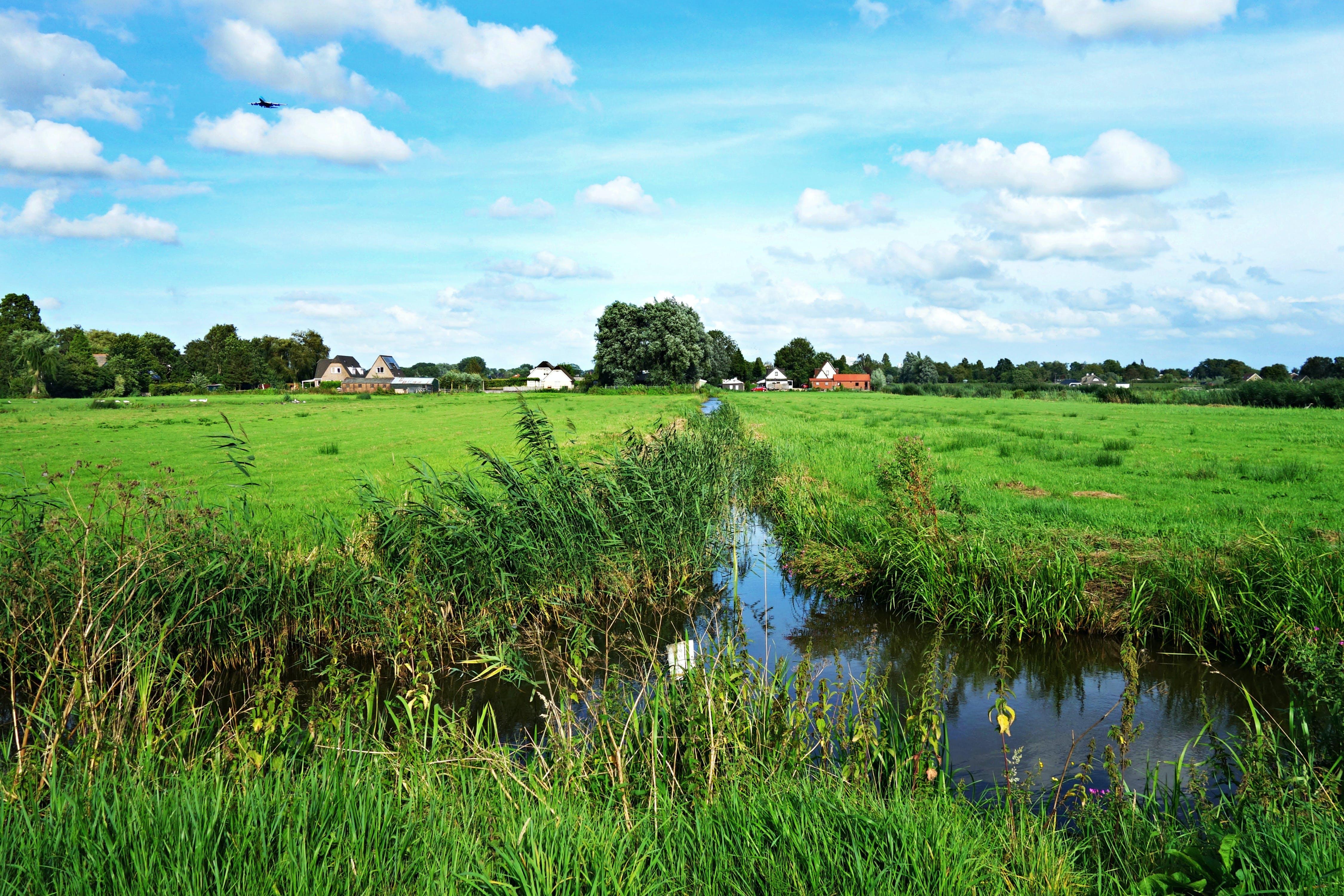 of amstelveen, countryside, ditch, Dutch landscape