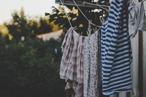 Gratis arkivbilde med hengende, klær, klessnor, lufttørking