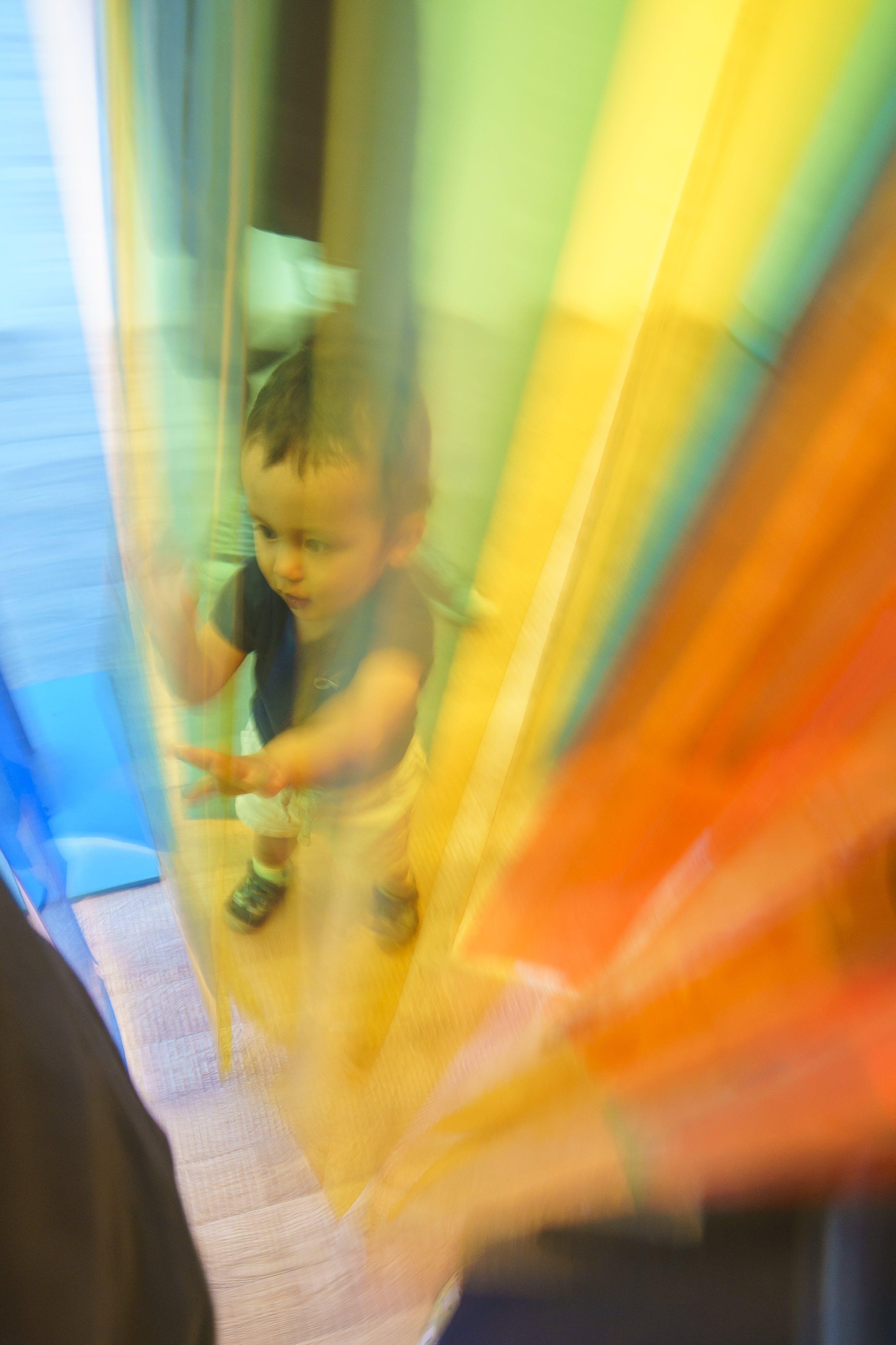 Free stock photo of children, color, colorful, fun