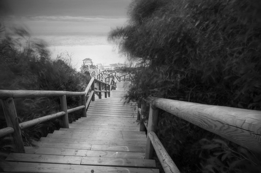 Free stock photo of stairs, black-and-white, beach, long-exposure