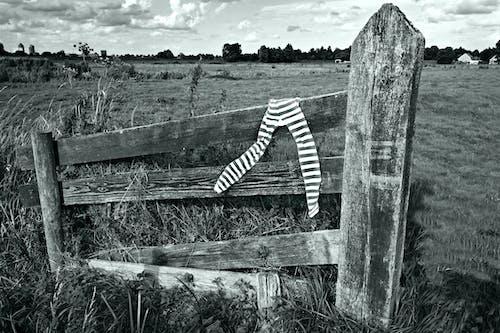 Free stock photo of accessory, black and white stripes, fashion, female