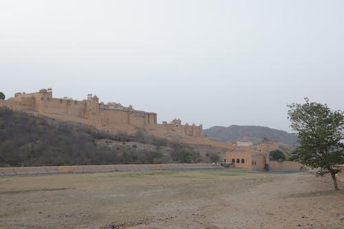 Základová fotografie zdarma na téma amer fort, indie, jaipur, pevnost