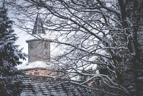 kar, kilise, kış, Noel içeren Ücretsiz stok fotoğraf