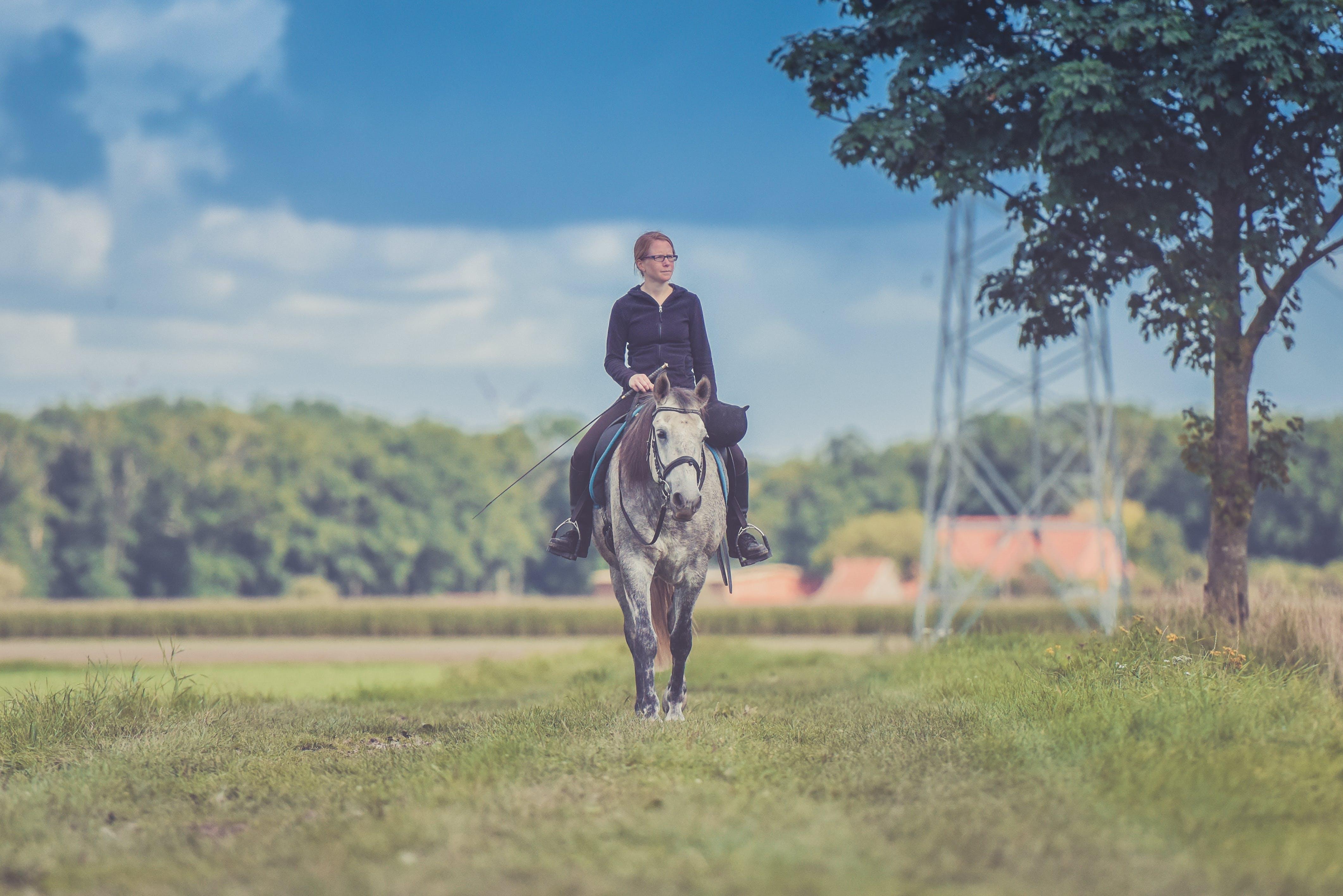 Woman Riding Horse Near Tree