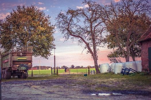 Kostenloses Stock Foto zu straße, bäume, landschaft, fahrzeug