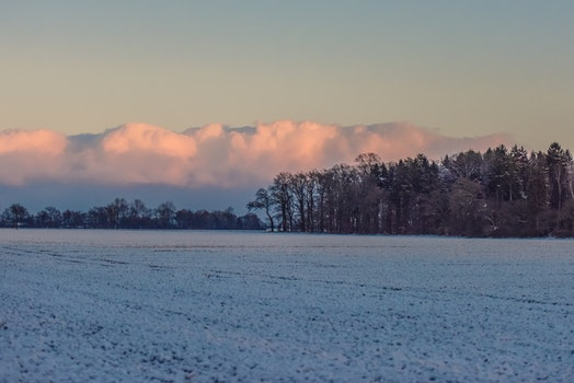 Free stock photo of nature, clouds, forest, winter