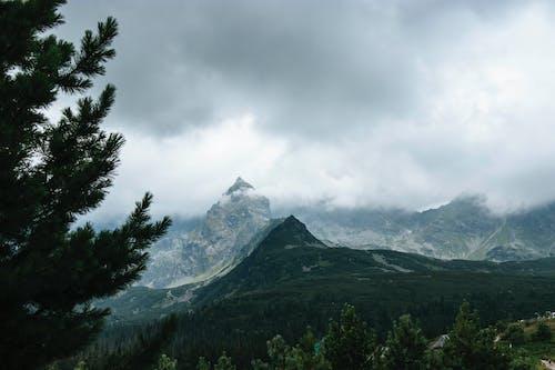 Gratis lagerfoto af bjerge, dagslys, høj, landskaber