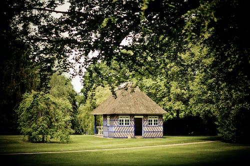 Бесплатное стоковое фото с архитектура, бунгало, газон, дом