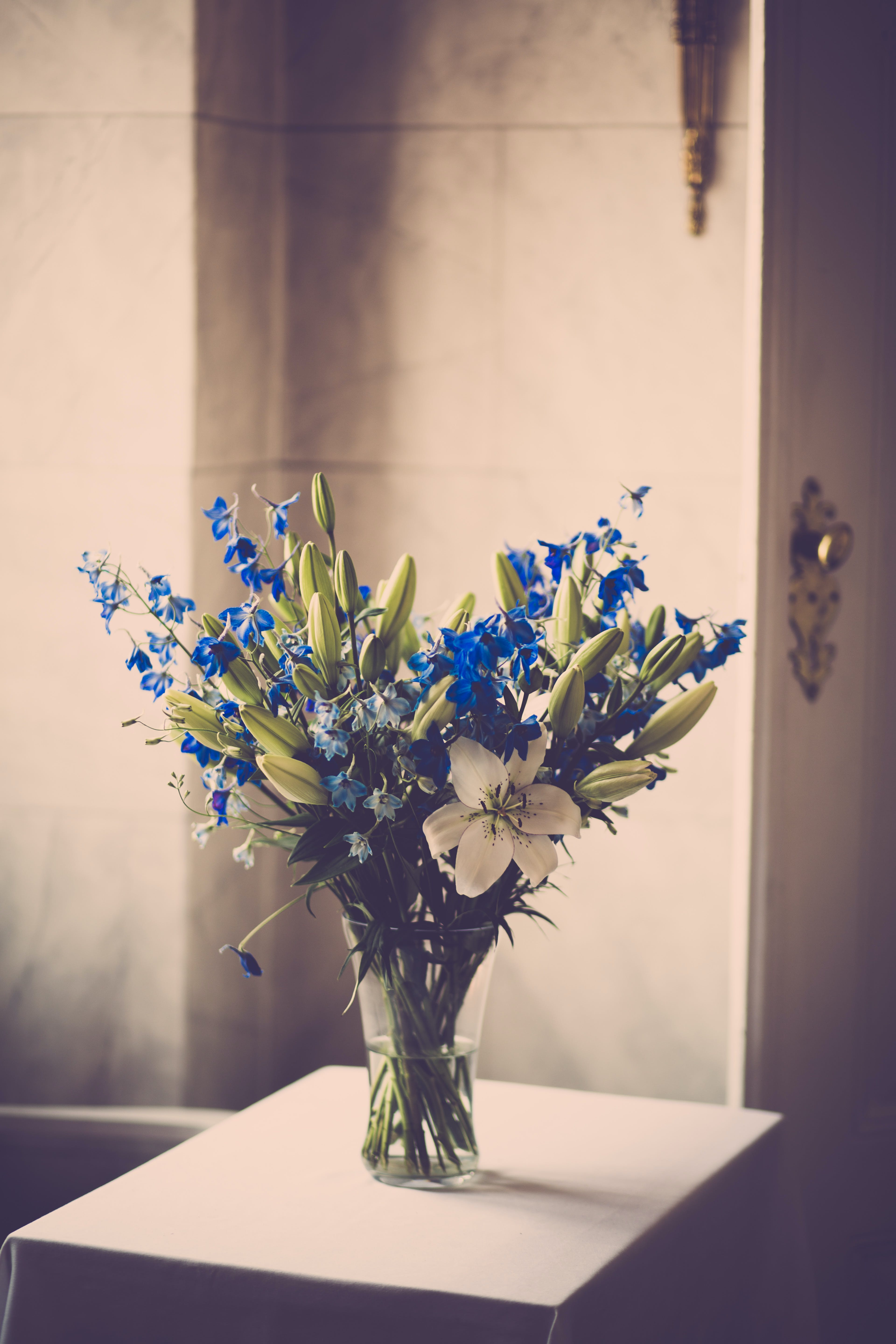Blue and White Flowers in Clear Glass Vase on White Table
