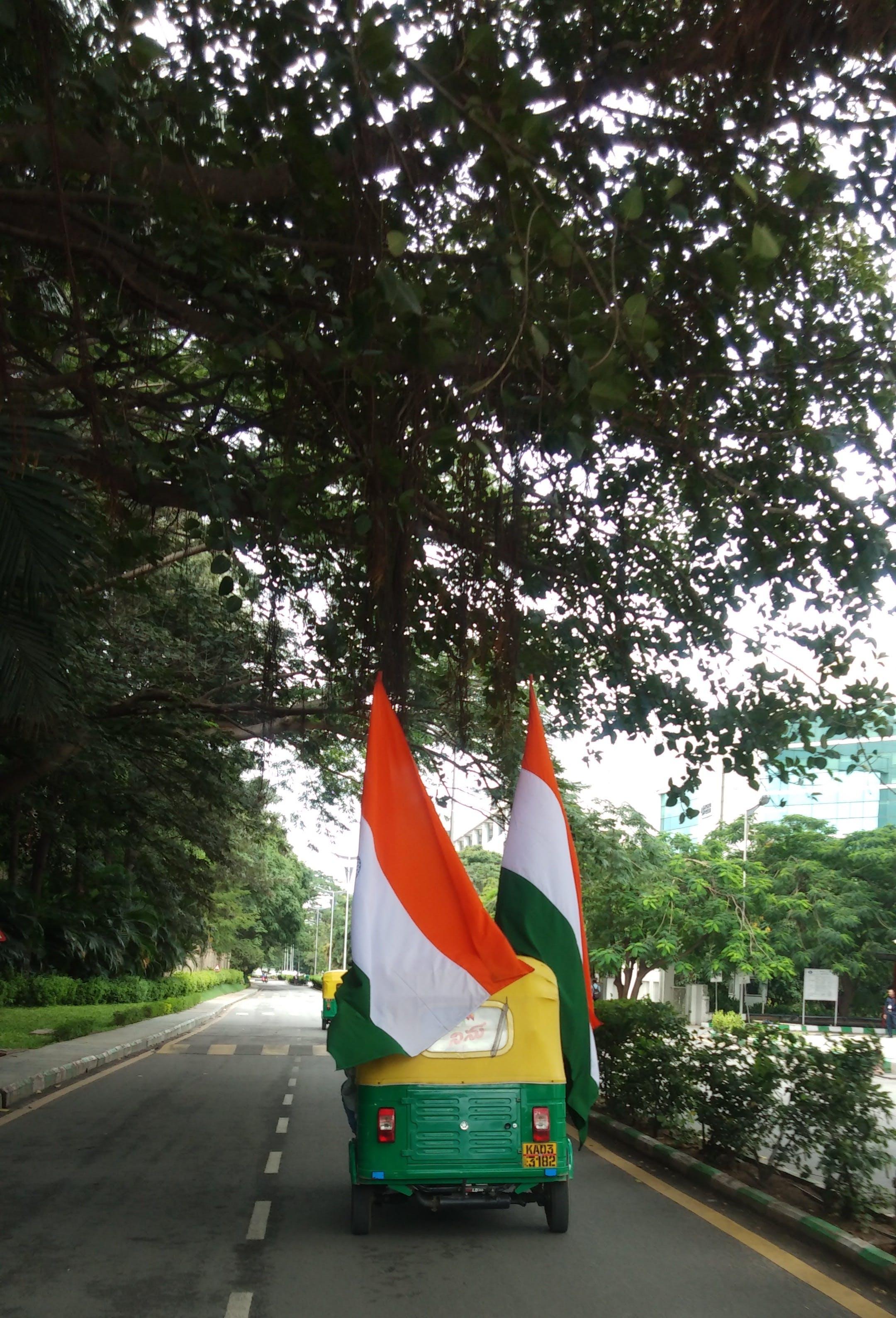Free stock photo of india, tiranga