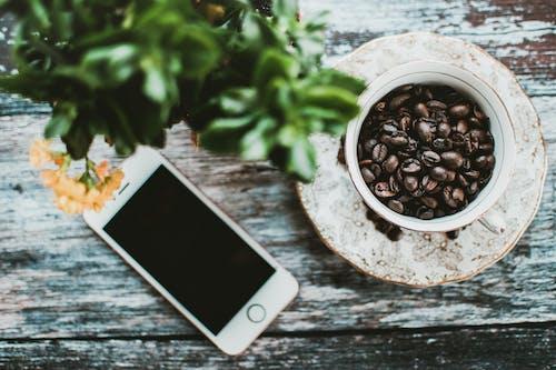 Безкоштовне стокове фото на тему «iPhone, блюдце, боби, великий план»