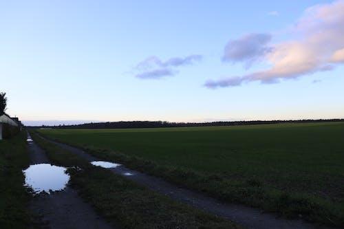 Foto profissional grátis de área, caminho, céu azul, gramado