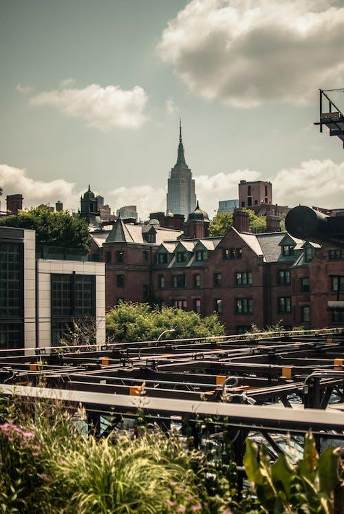 Бесплатное стоковое фото с highline, город, деревенский, нью-йорк