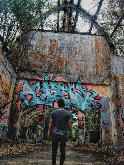 Gratis stockfoto met Bali, graffiti, kunst, natuur