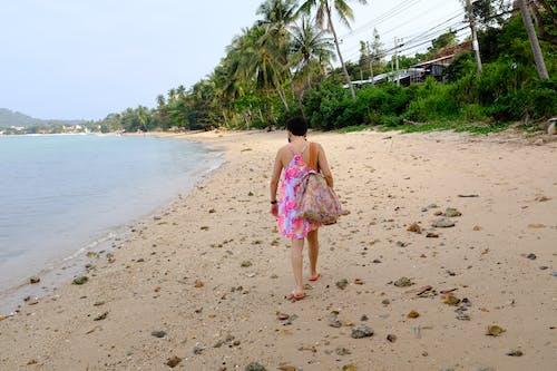 Gratis stockfoto met bomen, koh samui, strand, Thailand