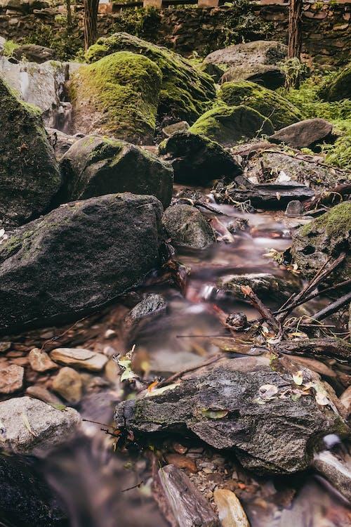 Fotobanka sbezplatnými fotkami na tému dlhá expozícia, kamene, krajina, les