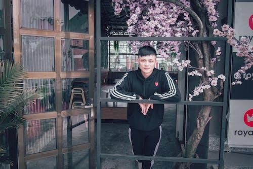おとこ, アジア人の少年, アダルト, インドアの無料の写真素材