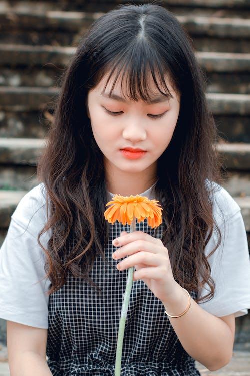 계단, 귀여운, 꽃