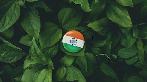 Photos gratuites de #inde, drapeau indien, inde, nature