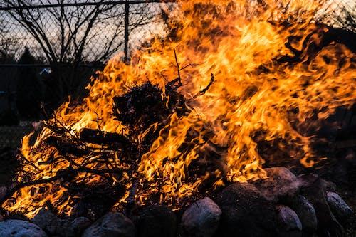 Ingyenes stockfotó homály, homályosít, lángok témában