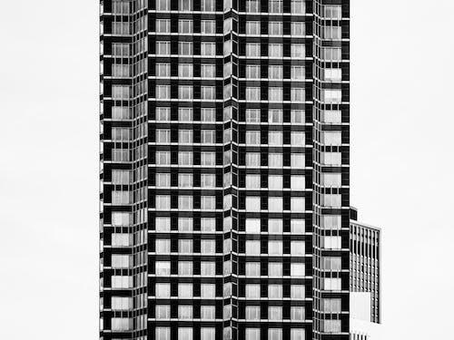 Imagine de stoc gratuită din alb-negru, arhitectură, aspect, birou