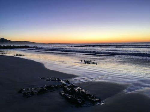 Kostenloses Stock Foto zu sonnenaufgang, strand
