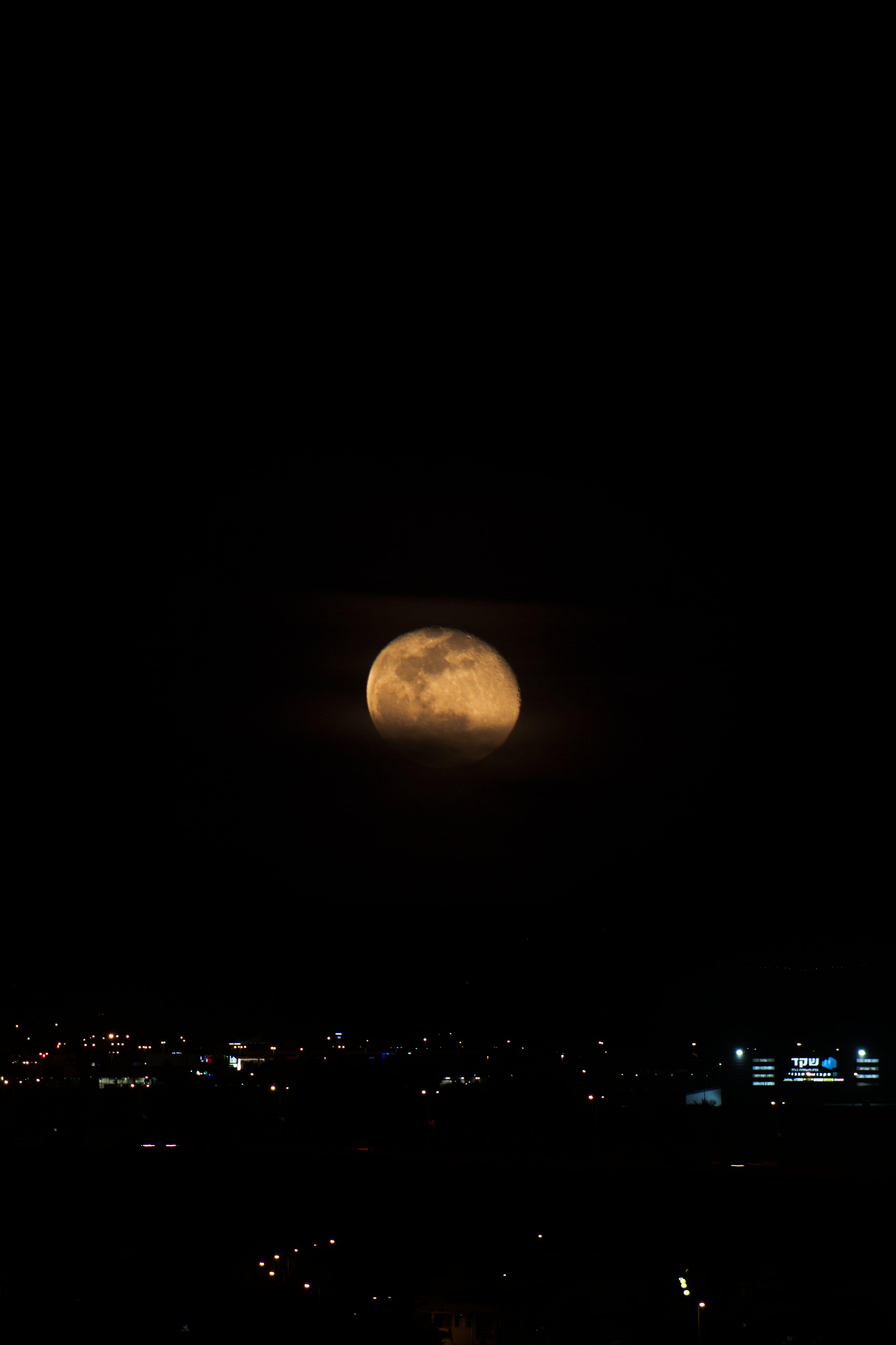 Free stock photo of full moon, moon, night