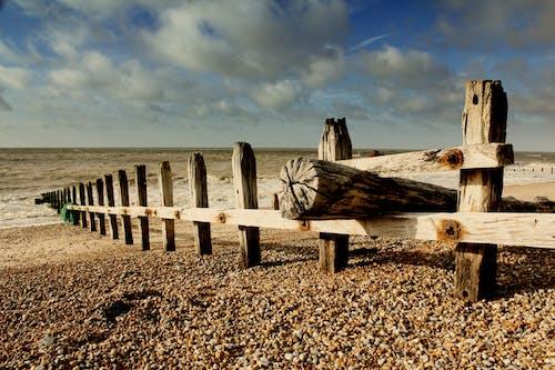 Gratis stockfoto met beachs, blauw, hemel, hout
