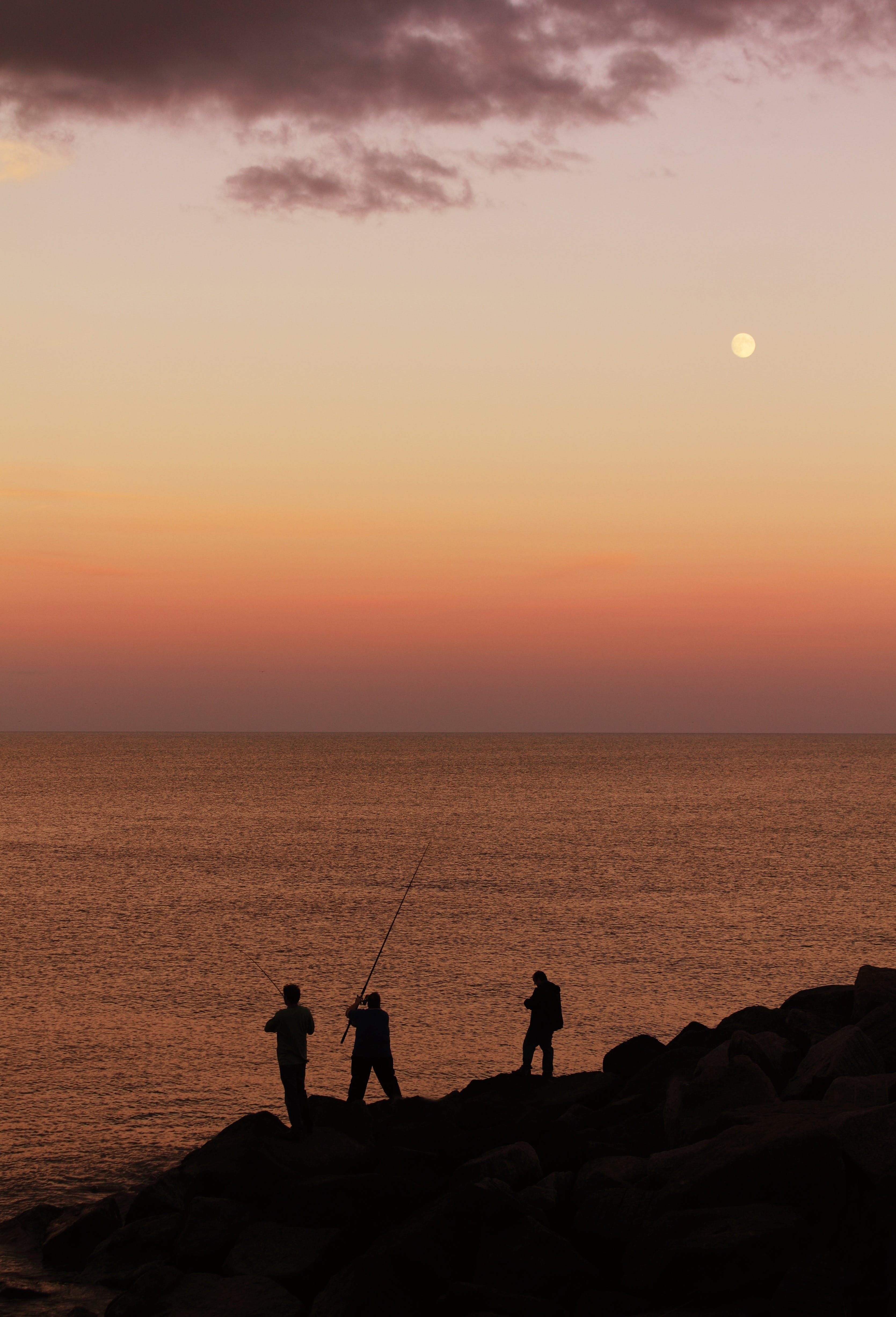 Silhouette of Person Fishing Near at Seashore