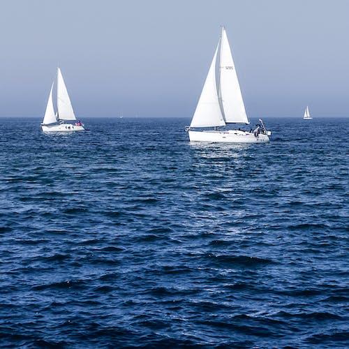 亞得里亞海, 夏天, 晴朗的天空, 深海 的 免費圖庫相片