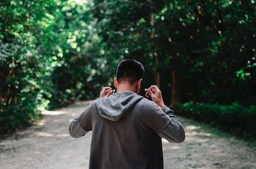 Ảnh lưu trữ miễn phí về ánh sáng ban ngày, áo hoodie, cây, con trai