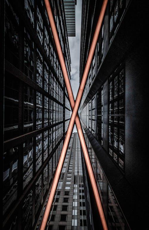 低角度拍攝, 低角度攝影, 建築, 摩天大樓 的 免费素材照片
