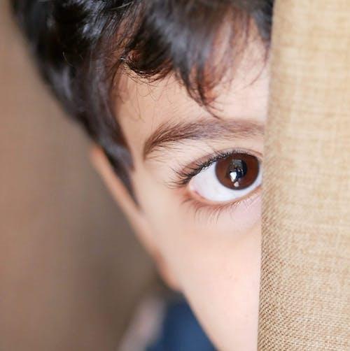 Free stock photo of beautiful eyes, boy, brown eyes