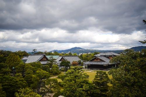 Fotos de stock gratuitas de arboles, cielo, cielo nublado, Japón