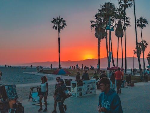 夏天, 日落, 海灘 的 免费素材照片