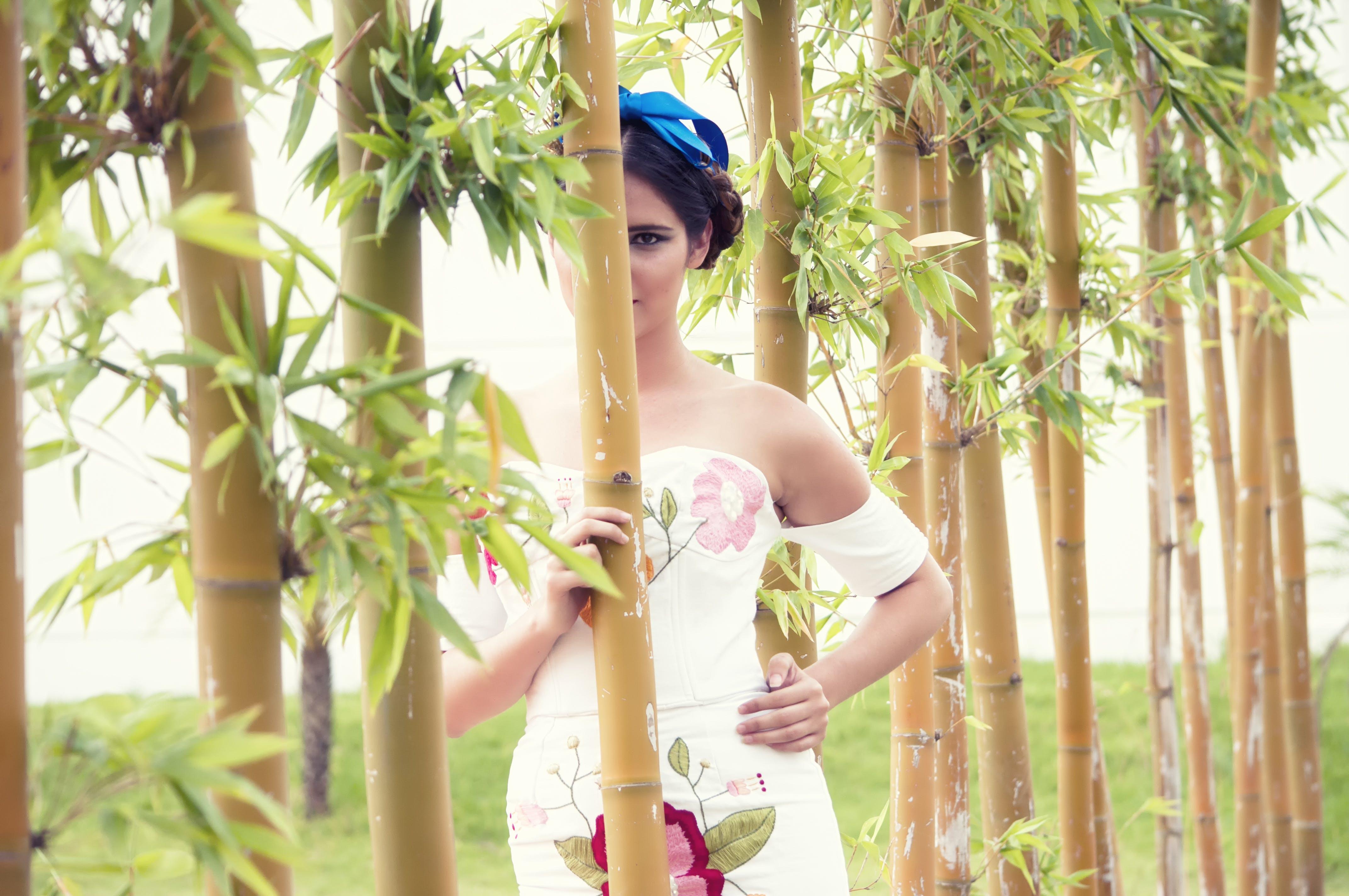 HDR, 녹색, 드레스, 모델의 무료 스톡 사진
