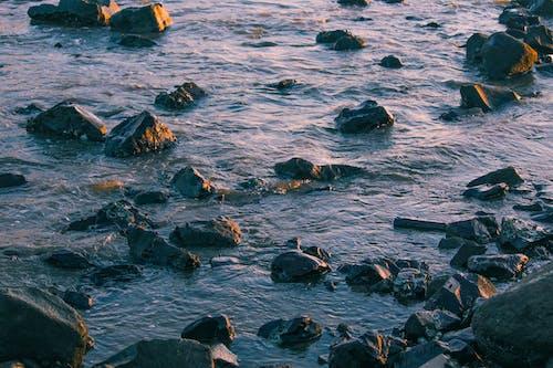 Photos gratuites de cailloux, eau, étendue d'eau, mer