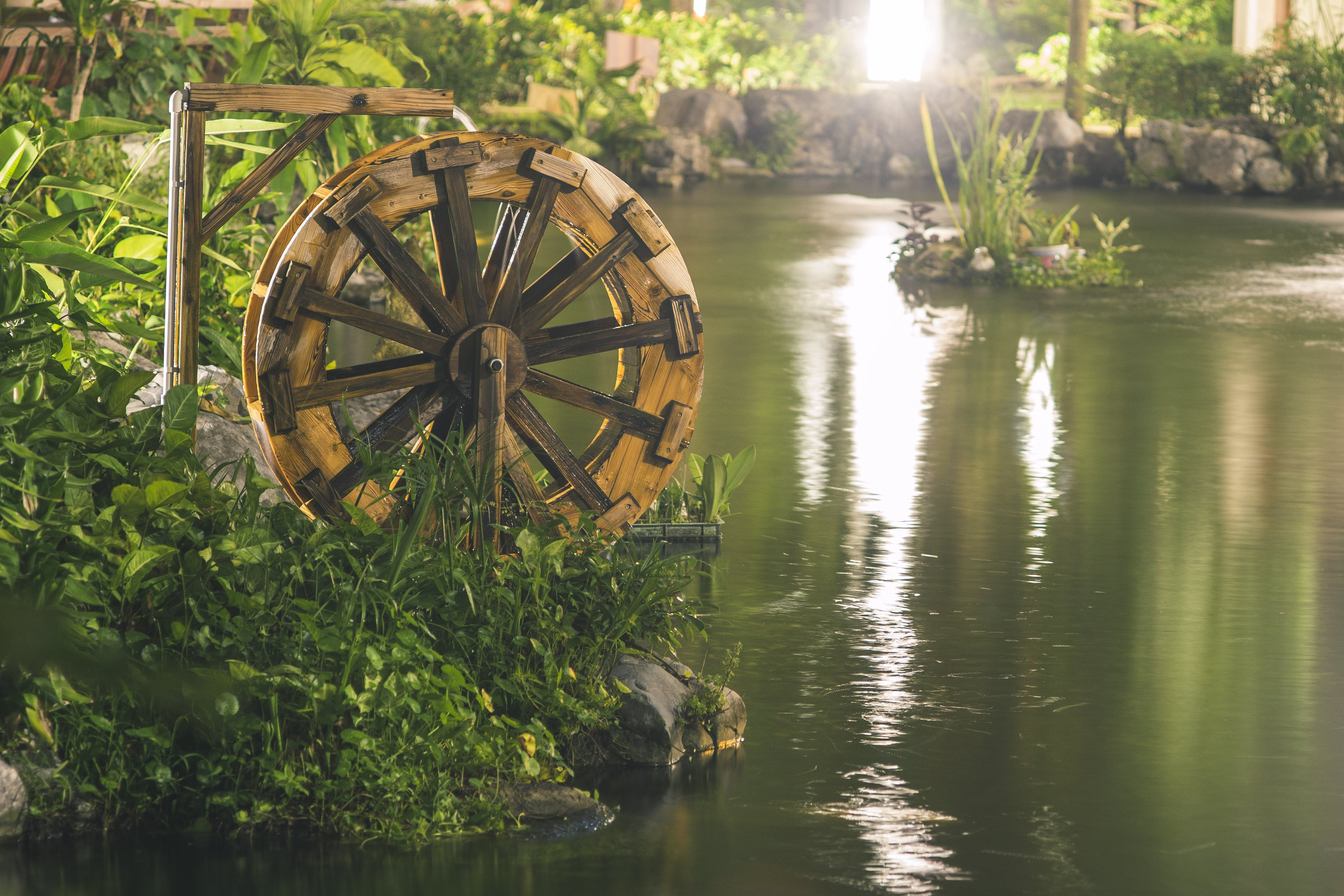 Foto d'estoc gratuïta de aigua, estany, roda, roda d'aigua