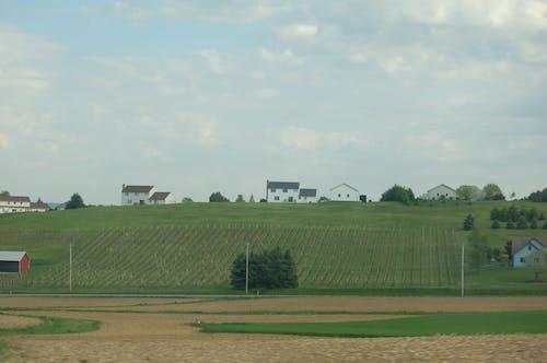 Fotobanka sbezplatnými fotkami na tému poľnohospodárska pôda, poľnohospodárstvo